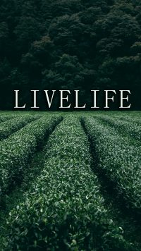 Life Wallpaper 31