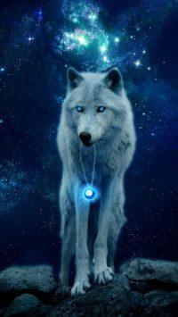 Wolf Wallpaper 25