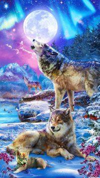 Wolf Wallpaper 20