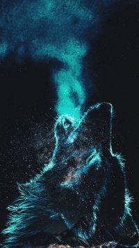 Wolf Wallpaper 22