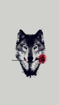 Wolf Wallpaper 32