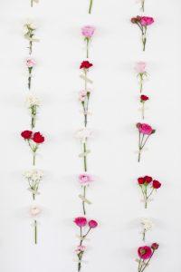 Flower Wallpaper 22