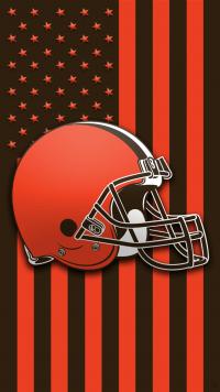 Pittsburgh Steelers Wallpaper 17