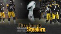 Pittsburgh Steelers Wallpaper 14