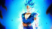 Vegeta Wallpaper 16