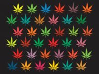 Weed Wallpaper 21