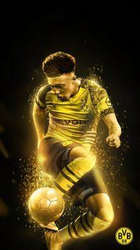 Borussia Dortmund Wallpaper 17