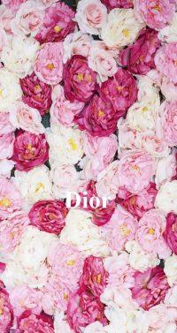 Dior Wallpaper 22