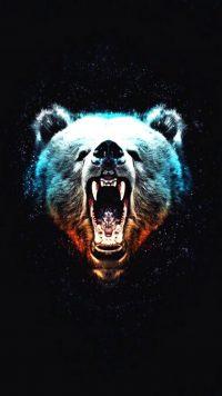 Chicago Bears Wallpaper 5