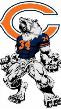 Chicago Bears Wallpaper 11