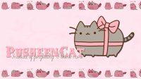 Cute pusheen wallpaper 15