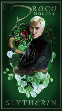 Draco Malfoy Wallpaper 38