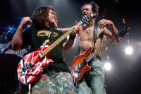 Eddie Van Halen Photo 11