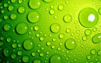 Green Wallpaper 24