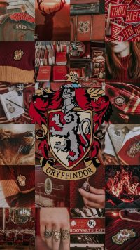 Gryffindor Wallpaper 29
