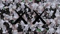 Kaws Wallpaper 4