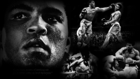 Muhammad Ali Wallpaper 19