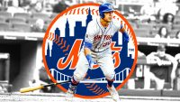 New York Mets Wallpaper 28
