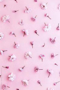 Pink Wallpaper 48