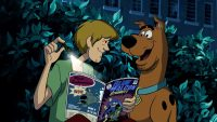 Scooby Doo Wallpaper 19