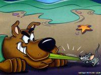 Scooby Doo Wallpaper 31