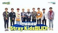 Stray Kids Wallpaper 4