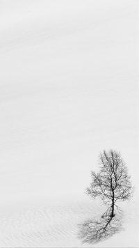 White Wallpaper 13