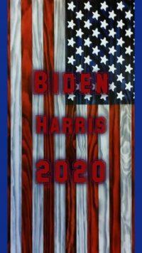 Biden Harris Wallpaper 15