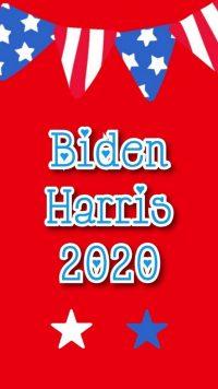 Biden Harris Wallpaper 16