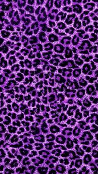 Cheetah Print Wallpaper 18