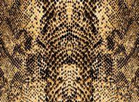 Cheetah Print Wallpaper 36