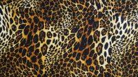 Cheetah Print Wallpaper 29