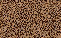 Cheetah Print Wallpaper 28