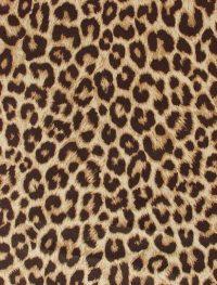 Cheetah Print Wallpaper 24
