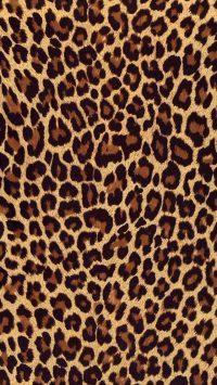 Cheetah Print Wallpaper 16