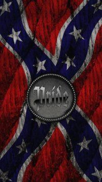 Confederate Flag Wallpaper 14