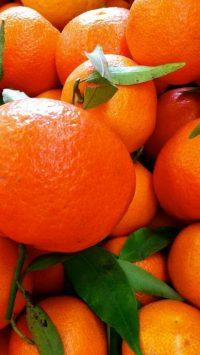 Orange Aesthetic Wallpaper 28