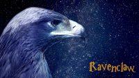Ravenclaw Wallpaper 19