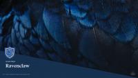 Ravenclaw Wallpaper 9