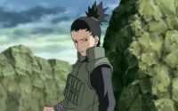 Shikamaru Nara Wallpaper 11