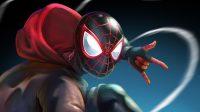 Spider Man Miles Morales Wallpaper 20