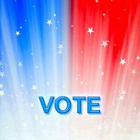 Vote Wallpaper 24