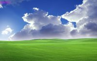 Windows xp Wallpaper 11