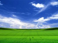 Windows xp Wallpaper 6