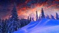 Winter Desktop Wallpaper 7