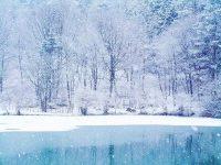 Winter Desktop Wallpaper 13