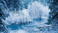 Winter Desktop Wallpaper 25