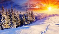 Winter Desktop Wallpaper 5