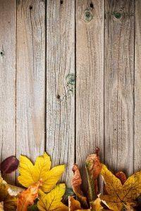 Wood Wallpaper 14