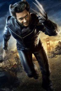 Wolverine Wallpaper 11